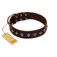 """Boundless Energy"" Premium Quality FDT Artisan Brown Designer Leather Rottweiler Collar with Small Pyramids"