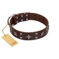 """Stars in Sands"" Modern FDT Artisan Brown Leather Rottweiler Collar with Studs and Stars"