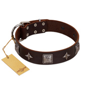 """Cold Star"" Designer FDT Artisan Brown Leather Rottweiler Collar with Silver-Like Adornments"