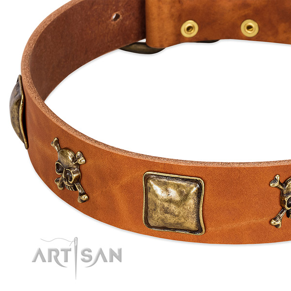Designer adornments on full grain genuine leather collar for your pet