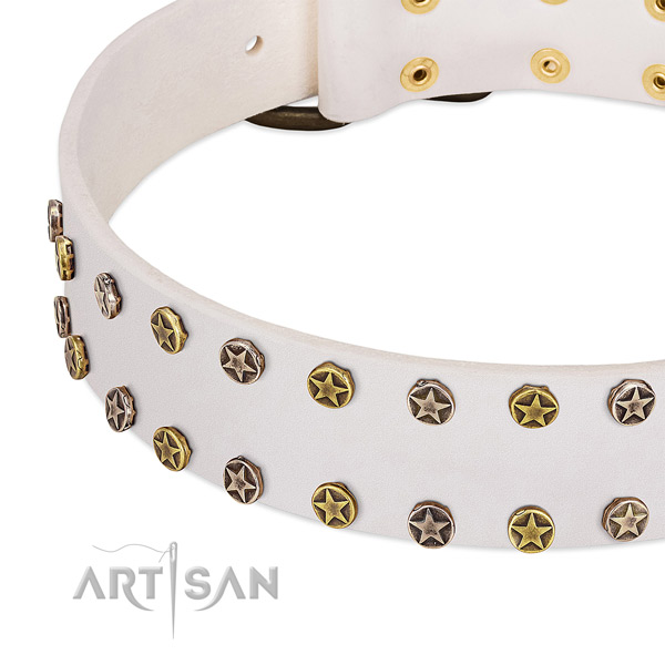 Fashionable studs on genuine leather collar for your dog