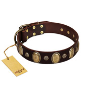 """Bronze Idol"" FDT Artisan Brown Leather Rottweiler Collar with Eye-catching Ovals and Small Studs"