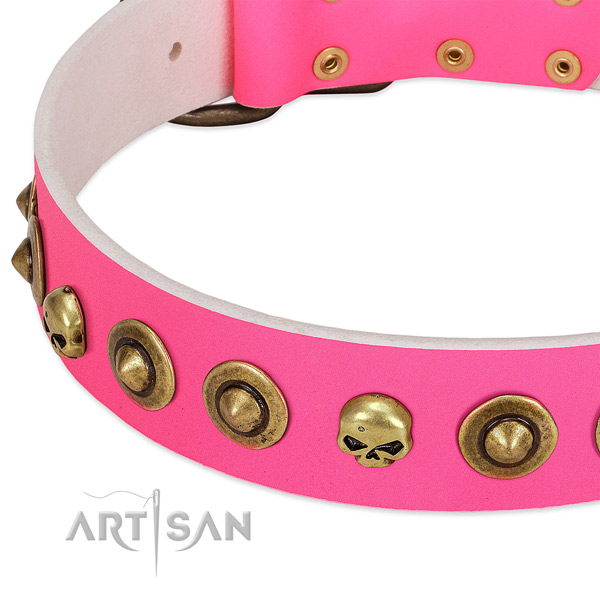 Stylish embellishments on leather collar for your pet