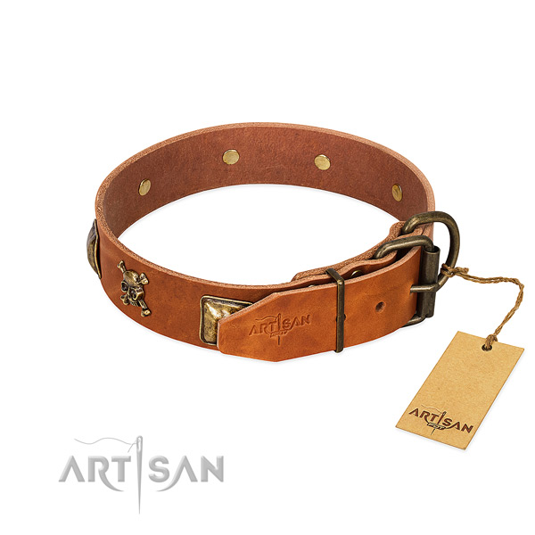 Trendy full grain leather dog collar with rust resistant adornments