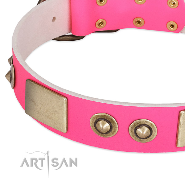Corrosion resistant decorations on full grain genuine leather dog collar for your doggie