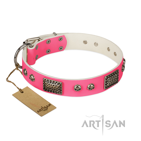 Easy wearing full grain genuine leather dog collar for walking your canine