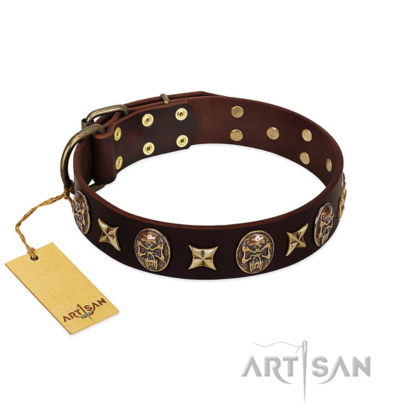 Incredible full grain leather collar for your pet