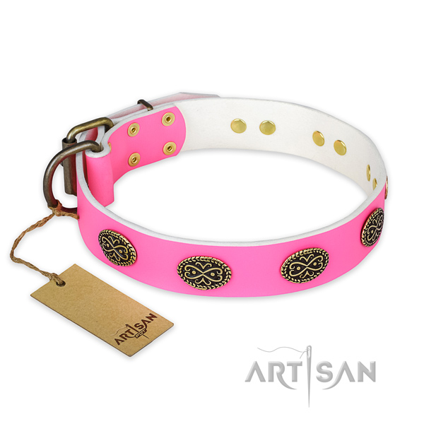 Exceptional full grain leather dog collar for daily use