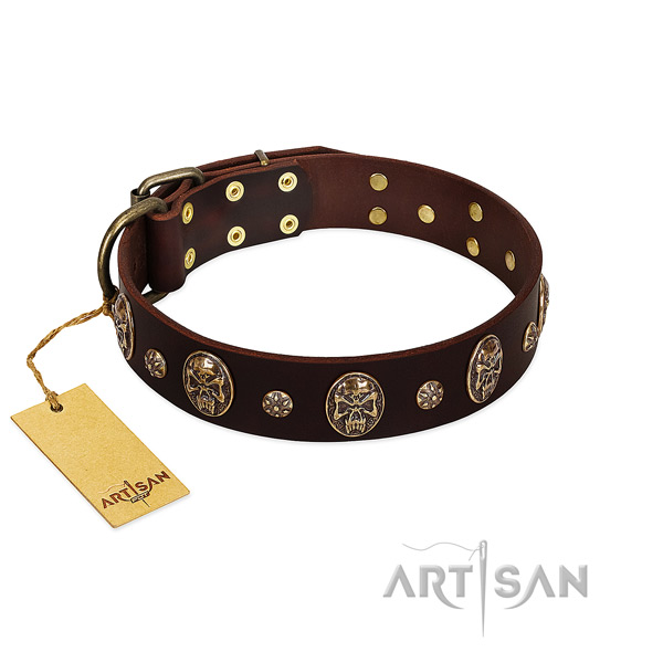 Unusual leather collar for your pet