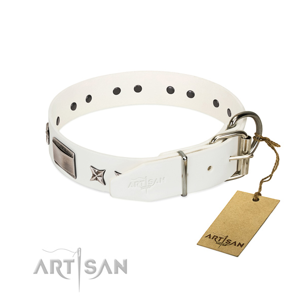 Unique collar of full grain leather for your beautiful canine