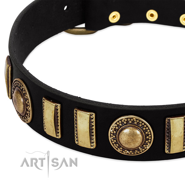 Reliable full grain leather dog collar with corrosion resistant traditional buckle