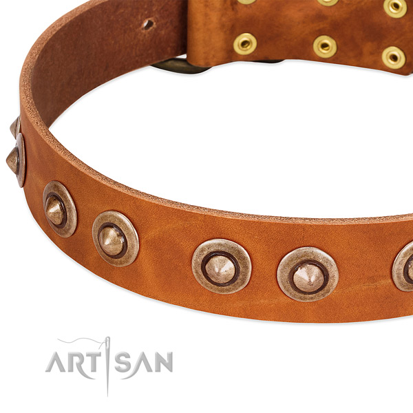 Durable buckle on leather dog collar for your four-legged friend