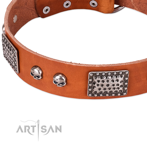 Corrosion proof buckle on natural genuine leather dog collar for your canine