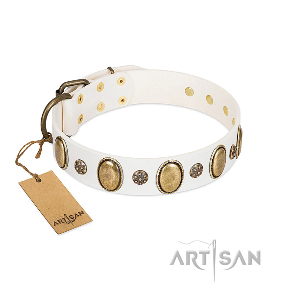 Everyday walking soft full grain leather dog collar with adornments