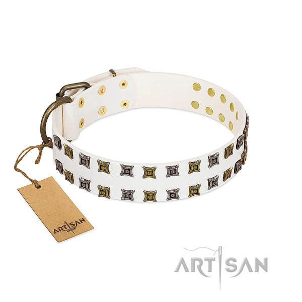 High quality genuine leather dog collar with adornments for your dog