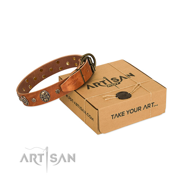 Corrosion resistant traditional buckle on genuine leather dog collar for your four-legged friend