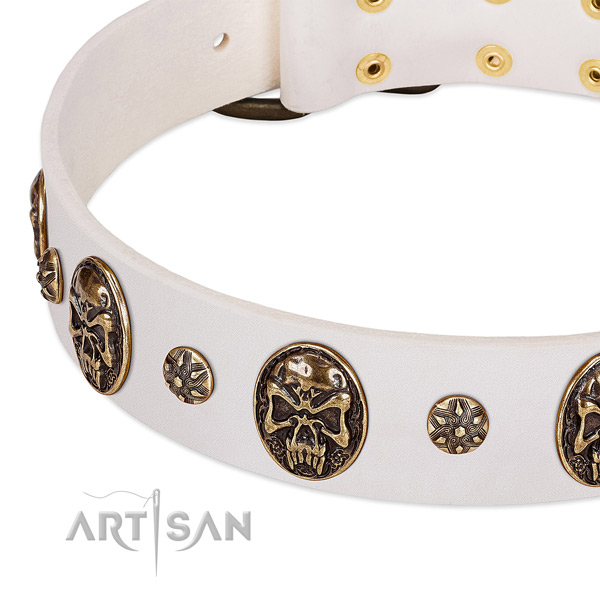 Strong decorations on full grain leather dog collar for your doggie