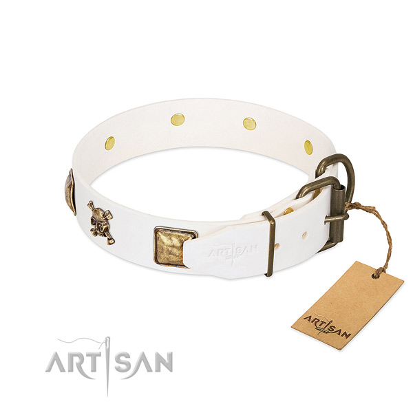 Exceptional full grain leather dog collar with rust resistant decorations