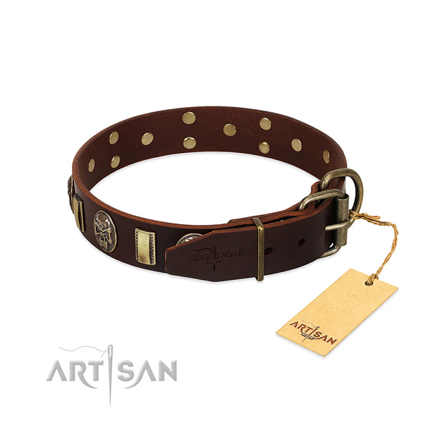 Leather dog collar with rust-proof hardware and embellishments