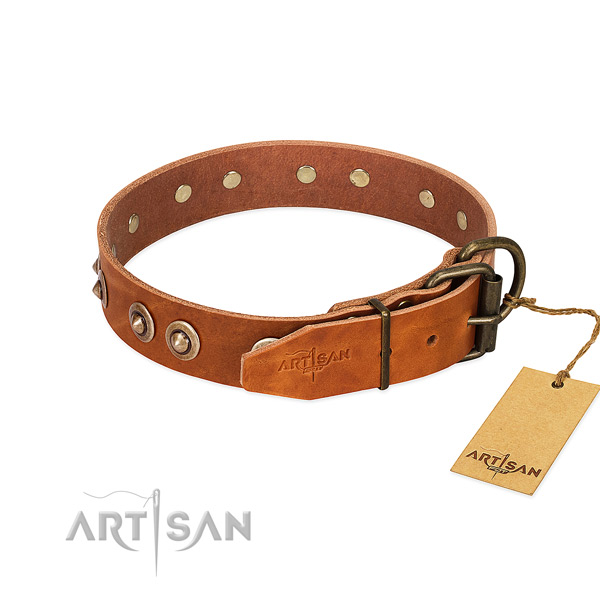 Strong traditional buckle on full grain natural leather dog collar for your pet