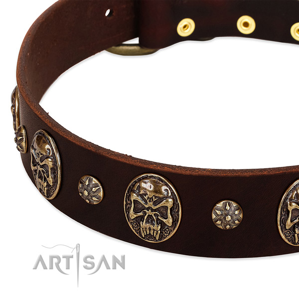 Rust resistant embellishments on leather dog collar for your doggie