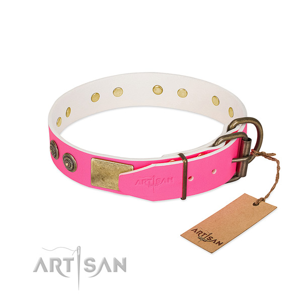 Reliable D-ring on full grain natural leather collar for walking your dog