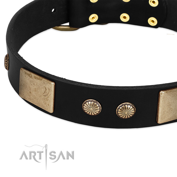 Full grain leather dog collar with adornments for comfortable wearing