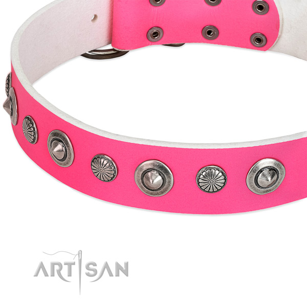 Full grain natural leather collar with rust-proof fittings for your lovely doggie