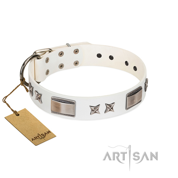 Impressive dog collar of full grain leather