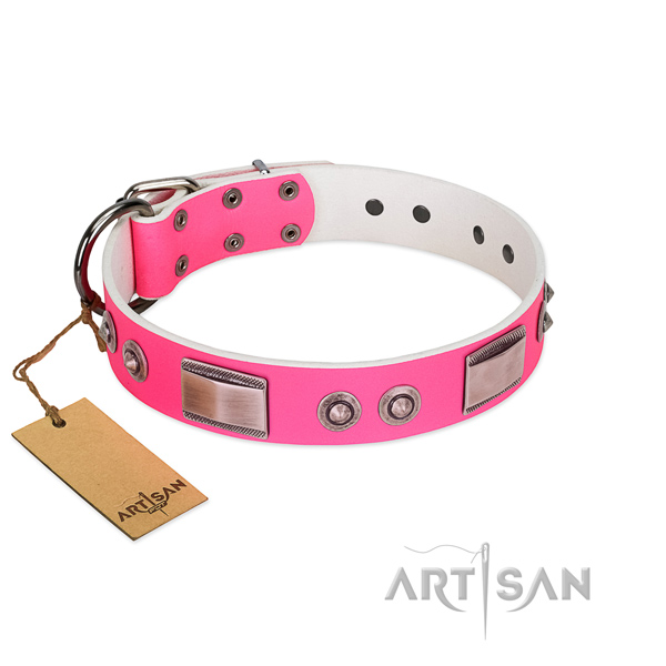 Easy to adjust leather collar with embellishments for your dog