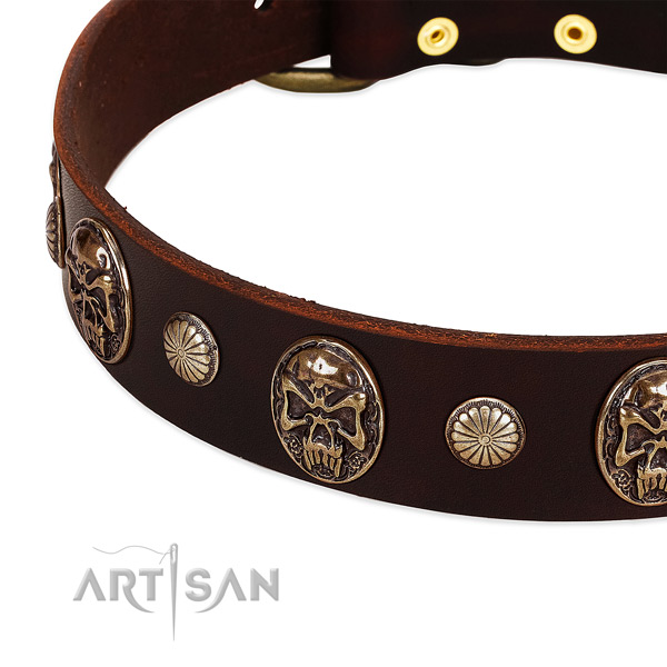 Full grain genuine leather dog collar with studs for stylish walking