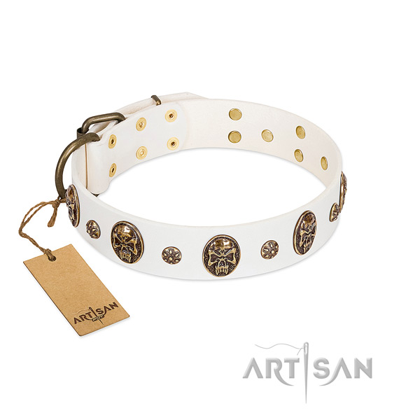 Exquisite leather collar for your pet