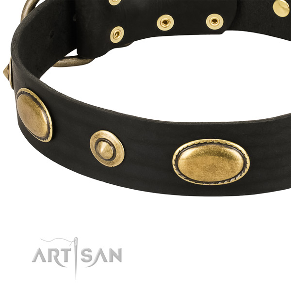 Rust-proof decorations on leather dog collar for your doggie