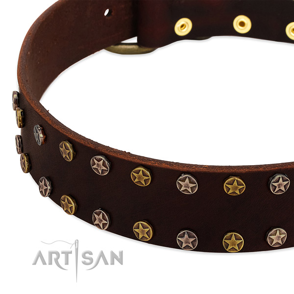 Everyday walking genuine leather dog collar with amazing decorations