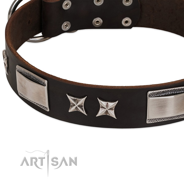 Top notch natural leather dog collar with rust resistant buckle