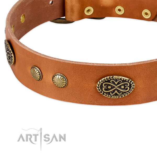 Reliable traditional buckle on full grain leather dog collar for your four-legged friend