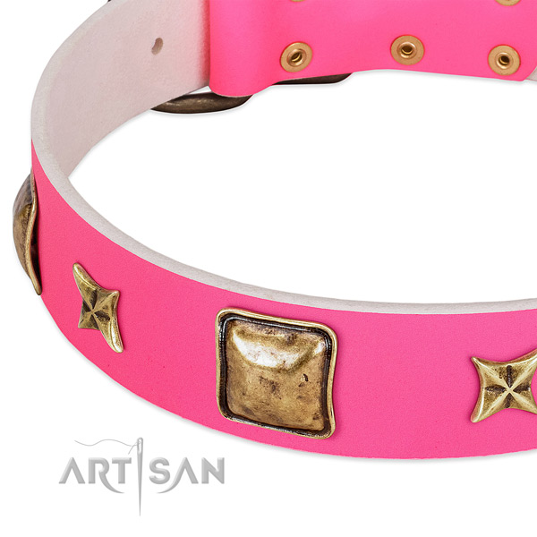 Natural leather dog collar with amazing adornments