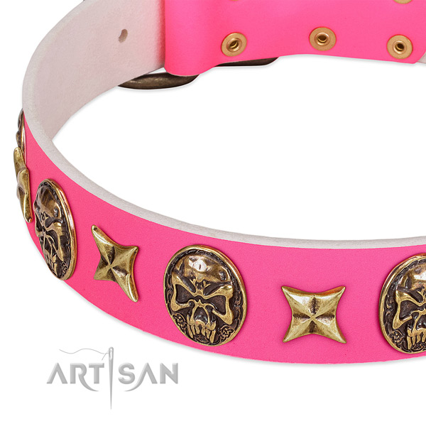 Genuine leather dog collar with fashionable embellishments