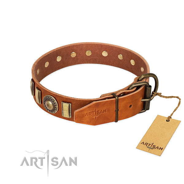 Studded full grain natural leather dog collar with rust resistant D-ring