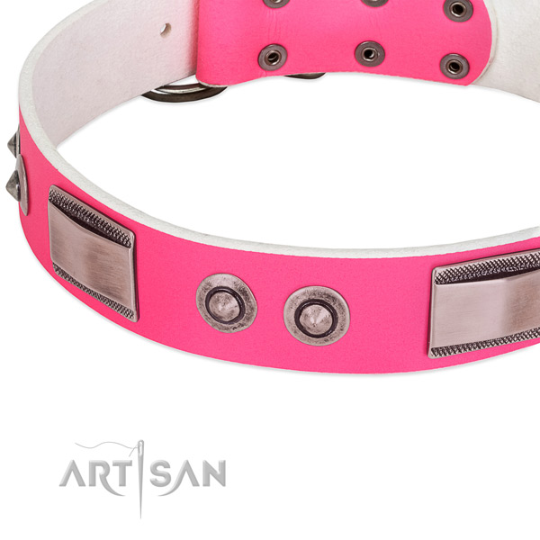 Trendy natural leather collar with embellishments for your four-legged friend