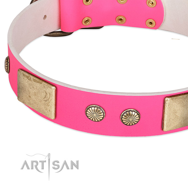 Corrosion proof adornments on natural leather dog collar for your four-legged friend