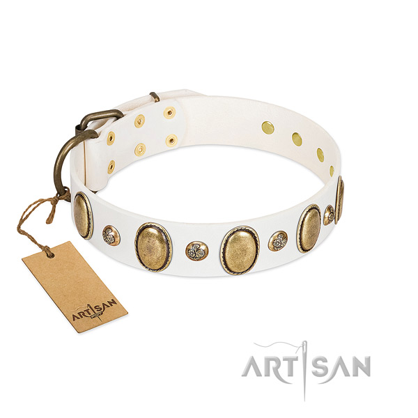 Natural leather dog collar of top notch material with top notch decorations