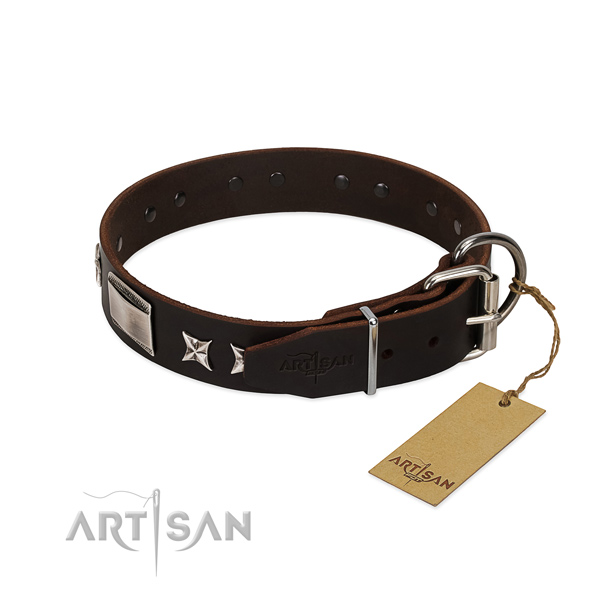 Designer collar of full grain natural leather for your attractive four-legged friend