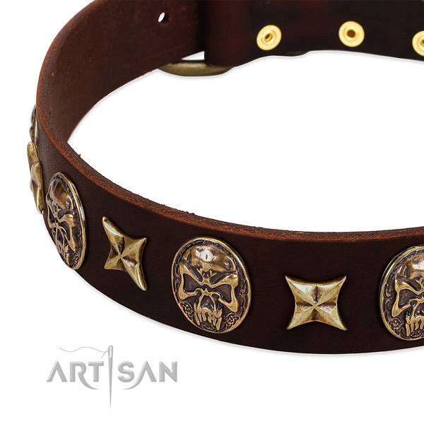 Corrosion proof adornments on full grain genuine leather dog collar for your canine