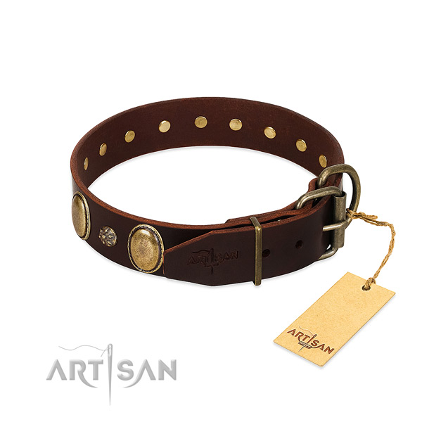 Stylish walking soft to touch full grain leather dog collar