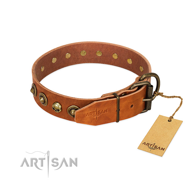Leather collar with top notch studs for your pet
