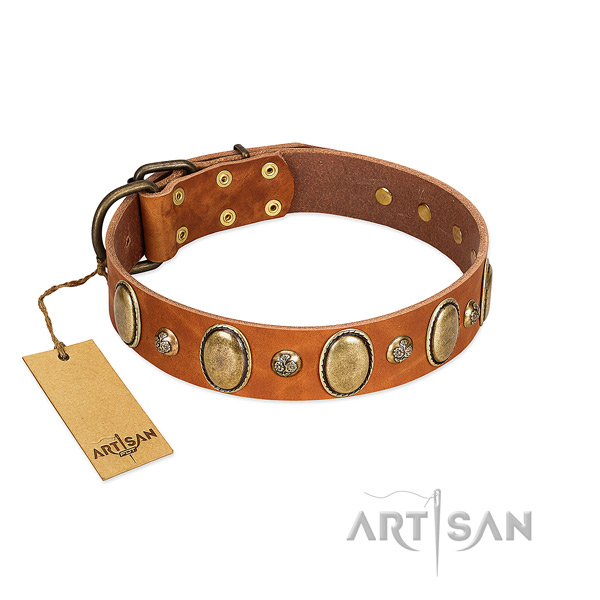 Full grain leather dog collar of reliable material with awesome decorations