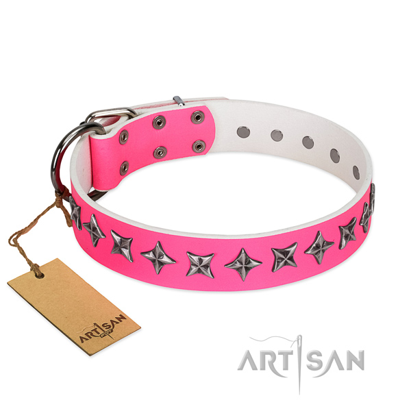 Walking dog collar of fine quality genuine leather with adornments