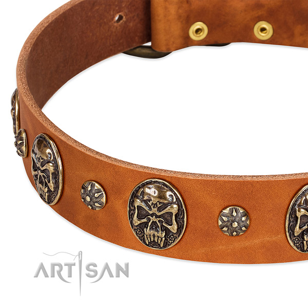Strong hardware on natural genuine leather dog collar for your pet