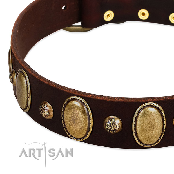 Full grain leather dog collar with stylish adornments